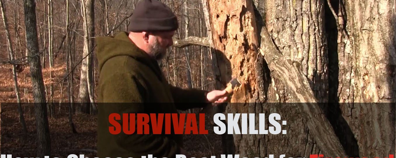 Survival Skills: How to Choose the Best Wood for Firewood